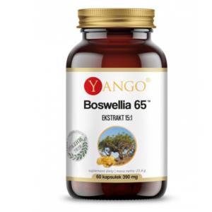 zdrowie naturalnie boswellia jelita stawy candida